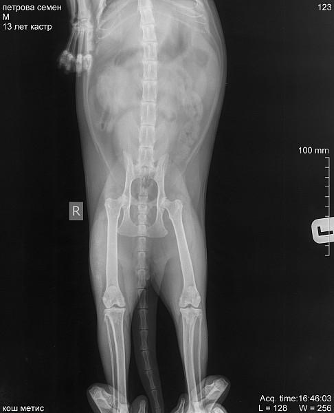 cum să tratezi artroza vagală