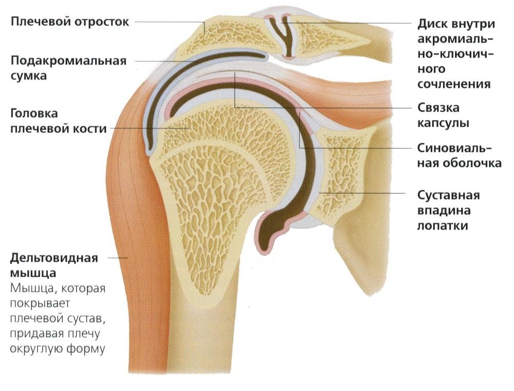 remediu eficient pentru durerea în articulațiile mâinilor tratamentul artrozei cu almac
