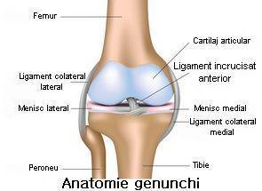 leziuni la nivelul genunchiului