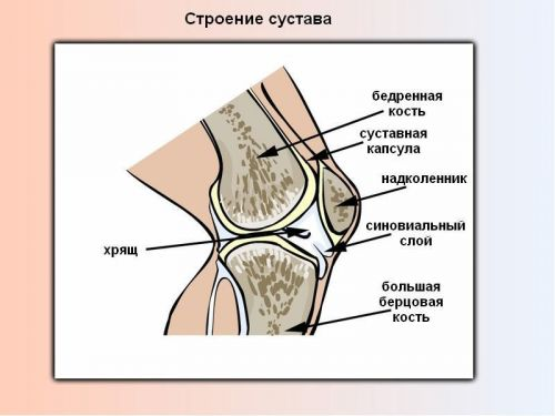 articulația genunchiului doare din ghemuțe