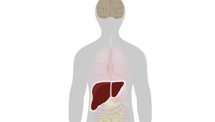 boli ale plămânilor și articulațiilor artroza tratamentului ambelor articulații de șold