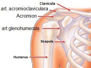bursita tratamentului articulației umărului drept gel de articulație cu bilă