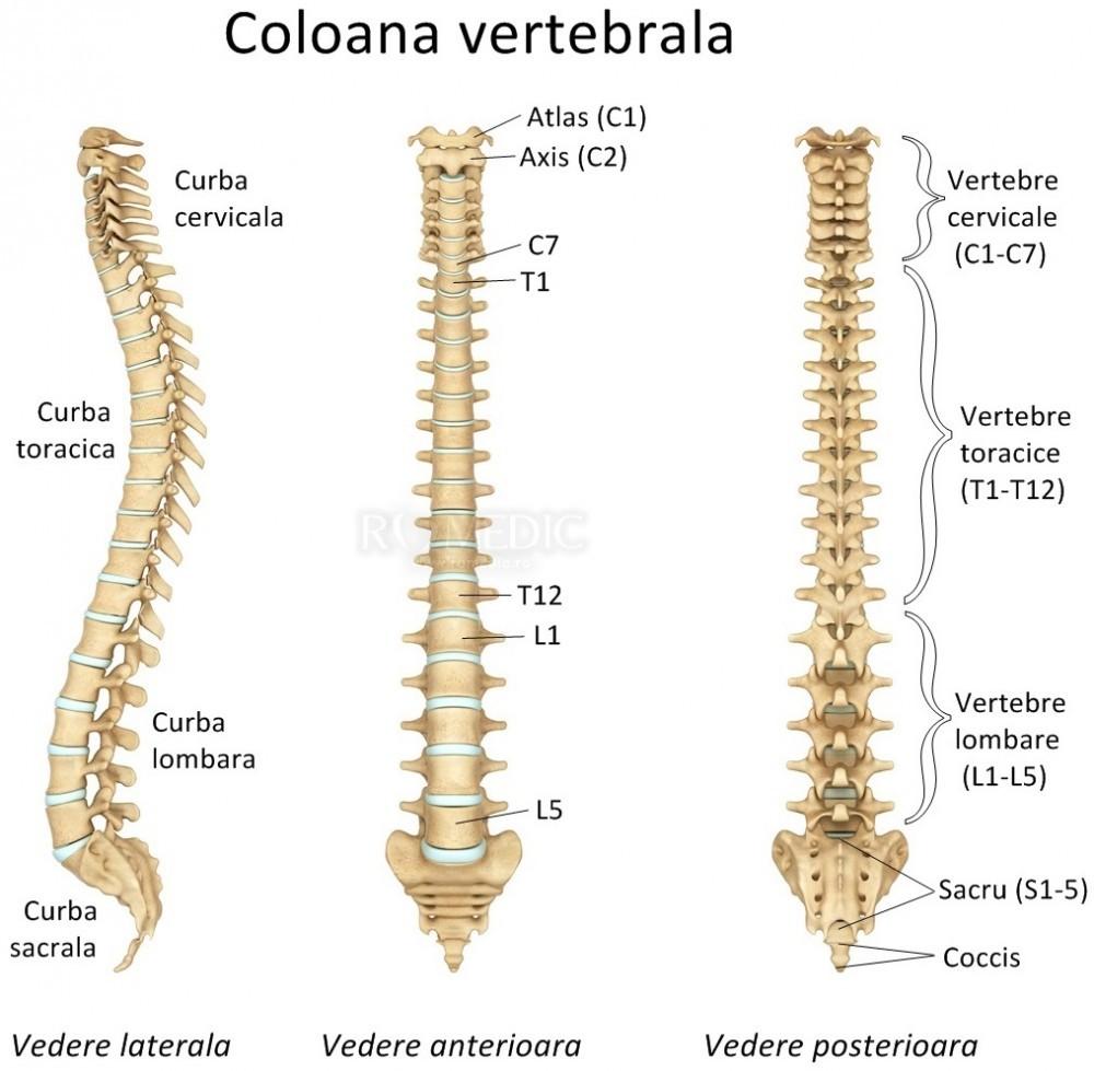 Tratament comun de tehnologie medicală când articulațiile doare ce să facă