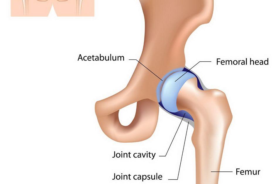 sfoara doare articulația șoldului