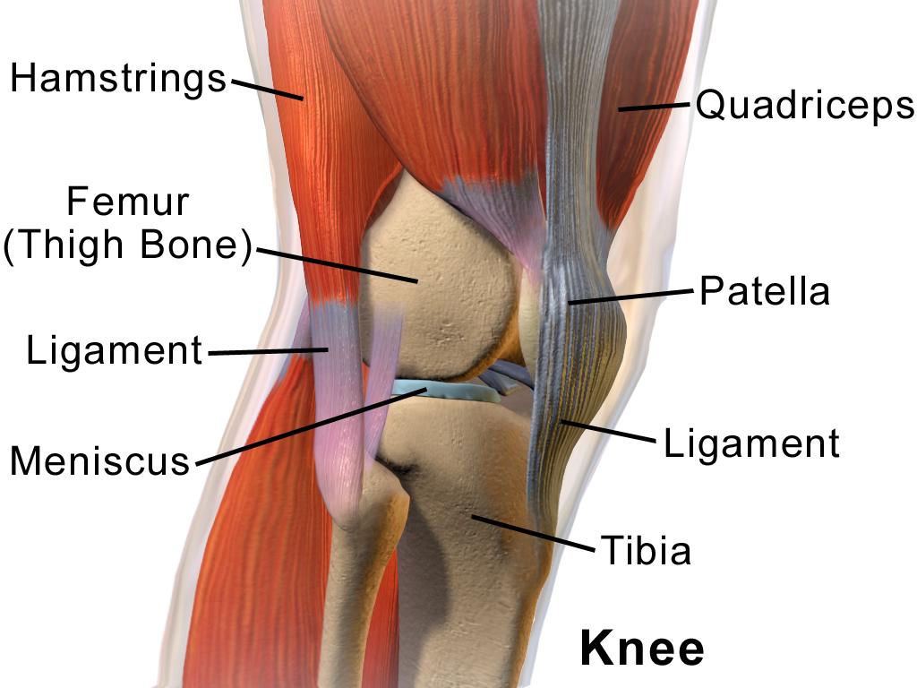 tratamentul artrozei de badami