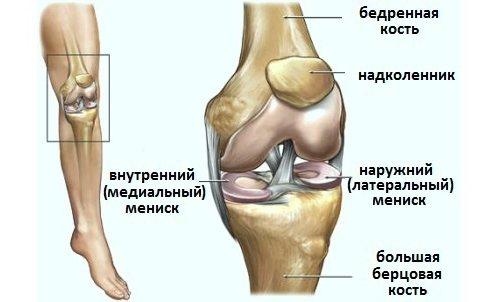 Deteriorarea meniscului intern și extern al articulației genunchiului. SFATUL SPECIALISTULUI