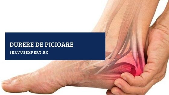 toate oasele și articulațiile rănesc recenzii o fisură în articulația genunchiului cât durează tratamentul