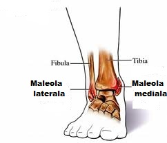 redă o mână pentru artrită rănile și articulațiile picioarelor doare