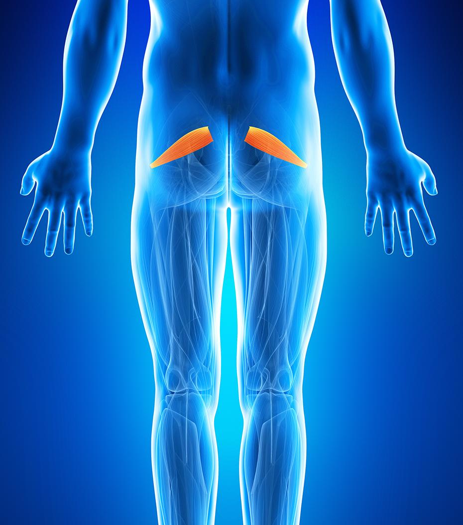durere la nivelul feselor de ce se frământă genunchii și se doare