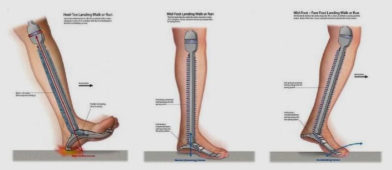 dureri articulare pe picioare după alergare tratați articulațiile piciorului