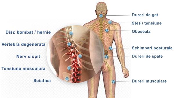 restaurarea articulației după alergare medicamente pentru fonoforeză pentru inflamația articulară