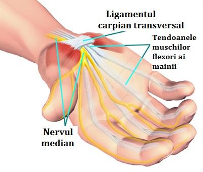 durere în articulația mâinii drepte după exercițiu