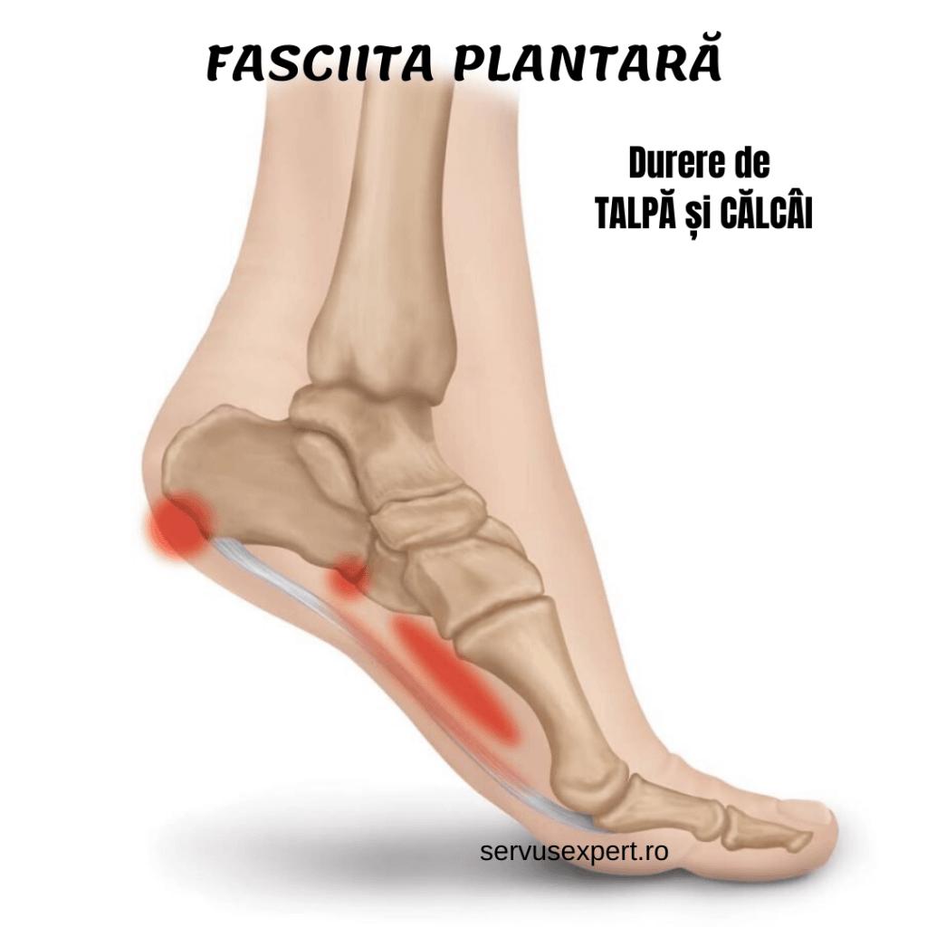 când articulația picioarelor doare dureri de genunchi și furnicături