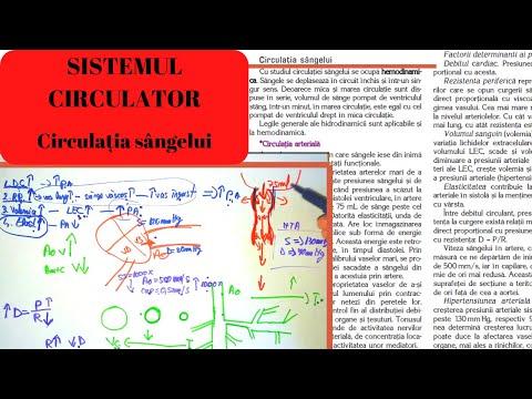 comprimate pentru osteochondroza genunchiului unguent pentru osteochondroza din regiunile toracice