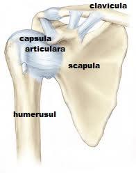 vătămarea capsulei articulației umărului